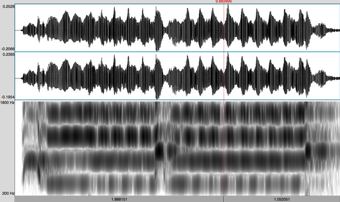 Spectrogram of a True Warble by Barry Higgins: Timothy Archambault playing Belo Cozad's Memory Song
