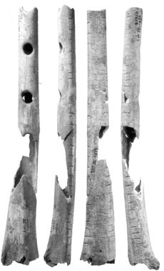 Photo of the Gravettian culture flute (B) from Isturitz