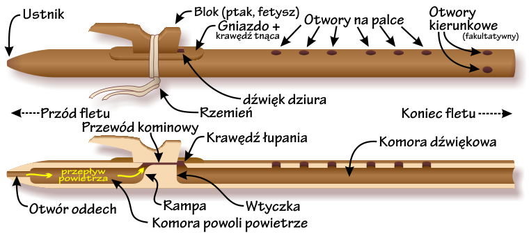 Components of the Native American flute — Polish-language labels