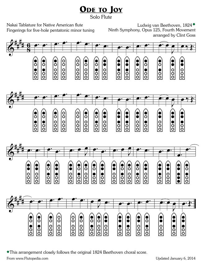 Ode to Joy - Five-hole Pentatonic Minor