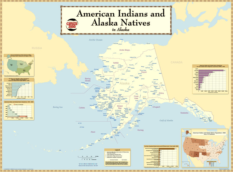 Census 2000 survey of American Indians and Alaska Natives